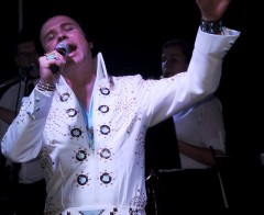 Elvis Celebration In Concert